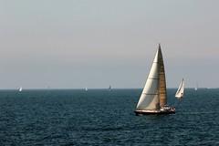 Vela (Alax66) Tags: barca vela mare ligure liguria nervi italy italia estate