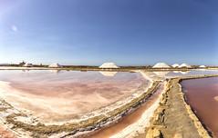 Saline di Nubia Uscita del sale 2016 (*Ciccio*) Tags: saline trapani nubia sale salinai explore