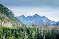 Zakopane mountain valley view (enurweb) Tags: outdoor mountain landscape mountainpeak mountainside valley zakopane poland polish nature