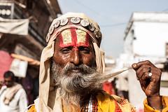 Pushkar, India (Aicbon) Tags: verde india pushkar rajastan rajasthan man old hombre barba santo yellow senyor sagrado asia canon 500d 50mm 14