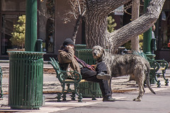 Santa Fe - Friends (Patrick Gregerson) Tags: 2009 canon7d canonefs18200mmf3556is canonrebelxti march nativeamerican newmexico santafe wolfhound buildings clearskies cold crafts dog noon people sunny vendors