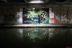 Urban Jungle (davva73) Tags: birmingham birminghamuk streetart street graffiti art canon canoneos city uk urban greatbritain