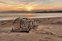 One that got away.... (Alex Bruce Photo) Tags: princeedwardisland pei beach sand sunrise lobstertraps coveheadbay coveheadpei morning