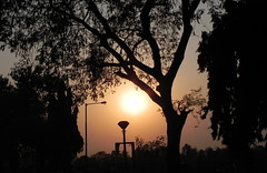 sun set at rankala lake garden (Durgesh Kulkarni) Tags: wonderful way beautiful perfect beautifulnature depth royal travel trees redinsect together temple track theking sky durgeshphotography unlimitedphotos sun cute orange forest countryside photo people amazing art artistic anand india indian sunset indiannature frame great girnar holy kolhapur love classic nice village vintage vishnu nature natural naturephotography natureshot naturalbeauty maharashtra mountain