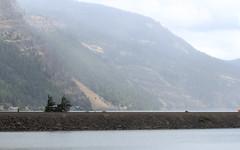 IMG_3503 (kz1000ps) Tags: tour2016 clouds oregon washingtonstate columbiariver border columbiarivergorgenationalscenicarea fog mist grey pinetrees train rail line cliffs canyon cascaderange