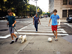 TSAU9590 (john fullard) Tags: 2016 iphone iphone6 newyork nyc phoneshots sugust summer uws street candid color colour ball dog pedestrians sidewalk hipstamatic