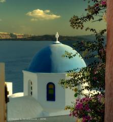 JW_Santorini_09_13_16_245 (HarrySchue) Tags: greece santorini nikon d800e flowers