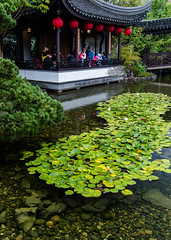 Portland Lan Su Chinese Garden (leighchen) Tags: bridge traditional culture chinese tourist park portland 1635mm nikon rain architecture lotus fish pond garden