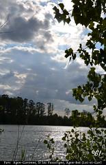 """Soir d't (Brigitte .. . """"Tatie Clic"""") Tags: 2014071110 juillet t soir soire arbre arbres contrejour silhouette ciel nuages eau leau lac coucherdesoleil sansretouche bleu parcnaturelagengaronne reflets refletsdansleau lotetgaronne aquitaine francesudouest"""