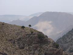 P1120340 (Terezaestkov) Tags: maroko morocco vysokatlas highatlas atlasmountains dabaltubkal jabaltbql jbeltoubkal