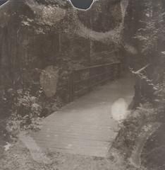 (abdukted1456) Tags: bridge blackandwhite slr me forest polaroid se woods path maine trail 600 integral scarborough slr680 680 expiredfilm landcamera 600bw instantfilm 680se