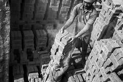 Brick Workers (bmahesh) Tags: people blackandwhite india brick workers clay canon5d chennai mahesh tamilnadu hardlife hardworkers brickfactory thirumazhisai canoneos5dmarkii brickworkers chennaiphotographer maheshphotography bmahesh wwwmaheshbcom
