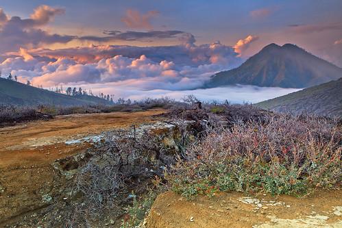Ijen Landscape