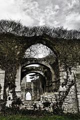 Vestiges (Ombre&Lumiere) Tags: picardie patrimoine ruines vestiges xixiiie chapelleromanedechamplieu