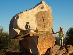 Whoah Horse (Conor O'Dea) Tags: horse sun head australia shade nsw outback brokenhill iseult sculpturesymposium