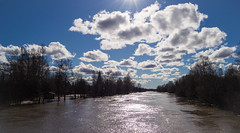 Spring flood (River Kyrnjoki) [EXPLORED] (iletus) Tags: blue sky sun reflection water sunshine suomi finland river outside spring cool nikon flood uncool 1855 nikkor vesi ilmajoki heijastus joki kevt tulva cool2 cool3 cool4 kyrnjoki uncool2 uncool3 uncool4 uncool5 uncool6 uncool7 d3100