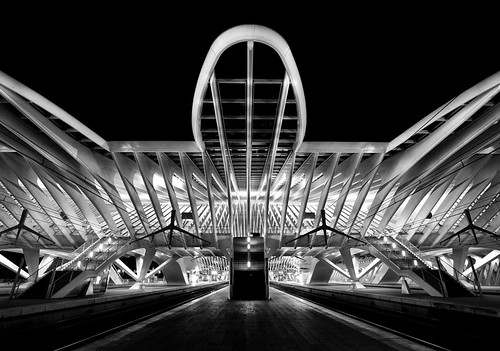 Entering (Liège-Guillemins XV)