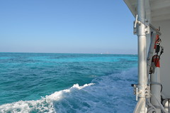 Headed out to the Reef (Carly Sabatino) Tags: ocean blue water key florida atlantic fl largo