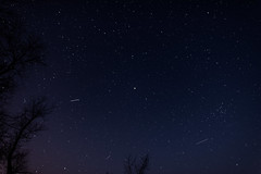 DSC_0249 (djwakeman) Tags: sky night nikon open 14 wide 24mm meteor d800 lyrid