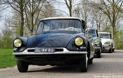 Citroën ID 19 1958 (XBXG) Tags: auto old france classic netherlands car vintage french automobile id ds nederland citroën voiture 1958 19 paysbas bij ancienne wijk wijkbijduurstede tiburón snoek citroënds déesse française duurstede strijkijzer citroënid dl4485