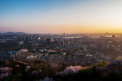 Wide Scene of Seoul in Spring at Sunset (tuanland) Tags: city trip travel bridge sunset vacation urban mountain building river evening spring nikon asia cityscape blossom hill seoul bloom southkorea hanriver namsan d80 nikond80