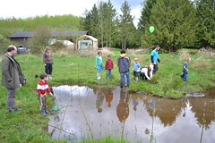 Guests having fun while netting wetland species. (BCWF Wetlands Education Program) Tags: bc britishcolumbia environmental frogs wetlands restoration langley wetland citizenscience bcwf townshipoflangley langleyenvironmentalpartnerssociety