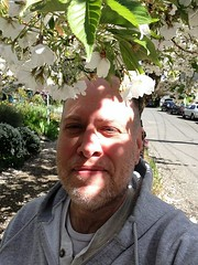 Day 470 - Day 104: Flowers in my hair (knoopie) Tags: selfportrait me doug april year2 capitolhill day104 picturemail iphone knoop 365days 2013 knoopie eastharrisonstreet 365more 365daysyear2 day470