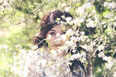into the wild by Melissa Gandhi - 29.52  .