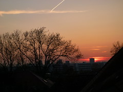 Sunset (John Steedman) Tags: uk greatbritain sunset england london sonnenuntergang unitedkingdom coucherdesoleil puestadelsol grossbritannien     grandebretagne