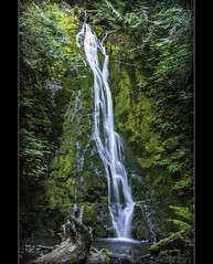Madison Creek Falls (Jayesh Modha) Tags: water waterfall waterfalls olympicnationalpark nikond90 washingtonwaterfalls washingtonattractions 18105mmf3556gvr nikon18105mmvrlens nikon18105vrlens jayeshmodha jayeshnikond90 jayeshmodhanikond90 jayeshmodhanikon bestevercompetitiongroup waterfallsofnorthwest waterfallofwashingonstate nikon18105mmf3656gvrlens nikonrawformat olympicnationalparkwaterfalltrail olympicpeninsulawaterfalltrail