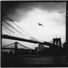 FulVue NYC Adox 20 Brooklyn and Manhatten Bridges (Miles Davis (Smiley)) Tags: new york city nyc 120 film darkroom paper square mg prints roll medium format 20 ful vue ilford cms ensign bsquare adox r09 ro9