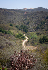 Beyond the Eagle Rock Trail - Topanga State Park, California (ChrisGoldNY) Tags: california plants mountains nature poster outdoors landscapes losangeles forsale hiking socal posters albumcover paths bookcover southerncalifornia topanga westcoast bookcovers hikes albumcovers eaglerock gridskipper laist topangastatepark losangelescounty jaunted eaglerocktrail chrisgoldny chrisgoldberg chrisgold chrisgoldphoto chrisgoldphotos