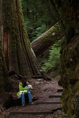 Nursing at Grove of the Patriarchs, Mt. Rainier (Brimley) Tags: parenthood nature kids children mother breastfeeding motherhood nursing