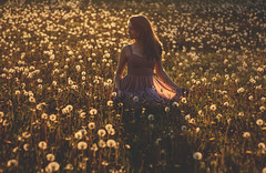 I choose to be in my own world. (Rosie Oates) Tags: world life light sunset portrait selfportrait love girl beautiful beauty field fashion backlight vintage pose hair photography 50mm dress location nostalgia thoughts sp portraiture mind shooting conceptual goldenhour dandelions selfie rosieoates