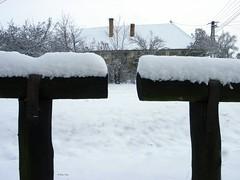 IMGP0248 (Peti0061) Tags: winter snow hungary snowy magyarország winter2010 vasmegye peti0061 nagygeresd