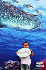 (greenpeaceth) Tags: thailand krabi nocoal hugkrabi