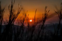 Bahria Town Sunset (SaadNasirKhan) Tags: pakistan sunset