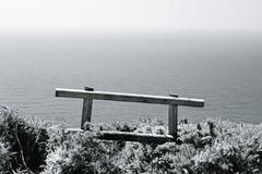The View (Musical Chillies) Tags: dorset englishchannel vista seascape blackandwhite horizon sea monochrome canon canon700d