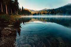 Caumasee (noson.photo) Tags: lake water caumasee flims graubnden schweiz switzerland fog foggy reflection reflections forest mountain mountains beautiful nikon tokina sunrise morning