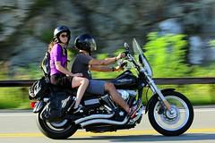 Harley-Davidson 1608203571w (gparet) Tags: bearmountain bridge road scenic overlook motorcycle motorcycles goattrail goatpath windingroad curves twisties couple couples outdoor vehicle