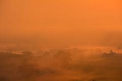 Bezana fog sunrise (Explored) (Luis Marina) Tags: niebla fog bezana sunrise amanecer orange naranja red rojo siluetas sombras silhouette today hoy spain