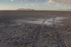 Brittle Trails (CineWolf) Tags: greatsaltlake sand utah landscape vast mountain distance trail tracks sunset white texture ground sky salt