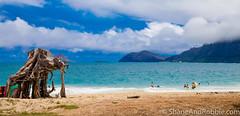 20160822(Canon EOS 6D)-00024 (ShaneAndRobbie) Tags: hawaii oahu usa america eastcoast windward kailua beach