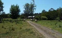 114 Atkins Rd, Stony Chute NSW