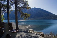 Lake Minnewanka (LunaticDesire) Tags: canada canadian ca northamerica north america western westerncanada therockymountains rockymountains rocky mountains moosetravel travel traveling exterior photography nikon d40 dslr 18105 may 2016 spring alberta ab banff lake minnewanka lakeminnewanka water glittering shore bench tree calm relaxing nature wild wilderness