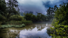 Enfin libre ! (Tra Te E Me (TTEM)) Tags: lumixfz1000 photoshop cameraraw pluie rain paysage landscape rivire brume mist misty river arbres trees vgtation reflets reflection jura syam franchecomt bluehour heurebleue