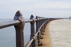 Railings on the pier (Rob Hall -) Tags: railings pier roker sunderland weathered rust old metal iron strong barrier safety rows black