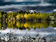 Otoño dramático (Luicabe) Tags: ngc agua airelibre animal ave cabello cielo enazamorado exterior luicabe luis naturaleza nube paisaje pato planta reflejo rãoduero yarat1 zamora ã¡rbol