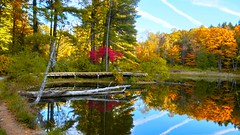 Autumn in the Berkshire Mountains (brooksbos) Tags: berkshires geotagged pond water reflection reflections trees woods autumn fall neewengland massachusetts mr