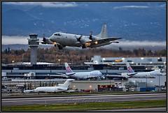 "158934 US Navy VP-40 Squadron ""Fighting Marlins"" (Bob Garrard) Tags: 158934 us navy vp40 squadron fightingmarlins lockheed p3c orion anc panc united states usn"